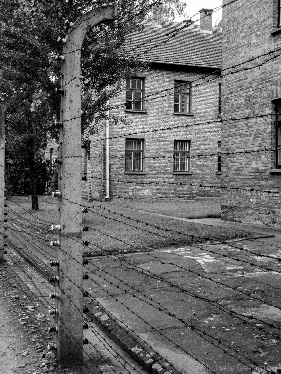 barbed wire in Auschwitz concentration camp. Black and white