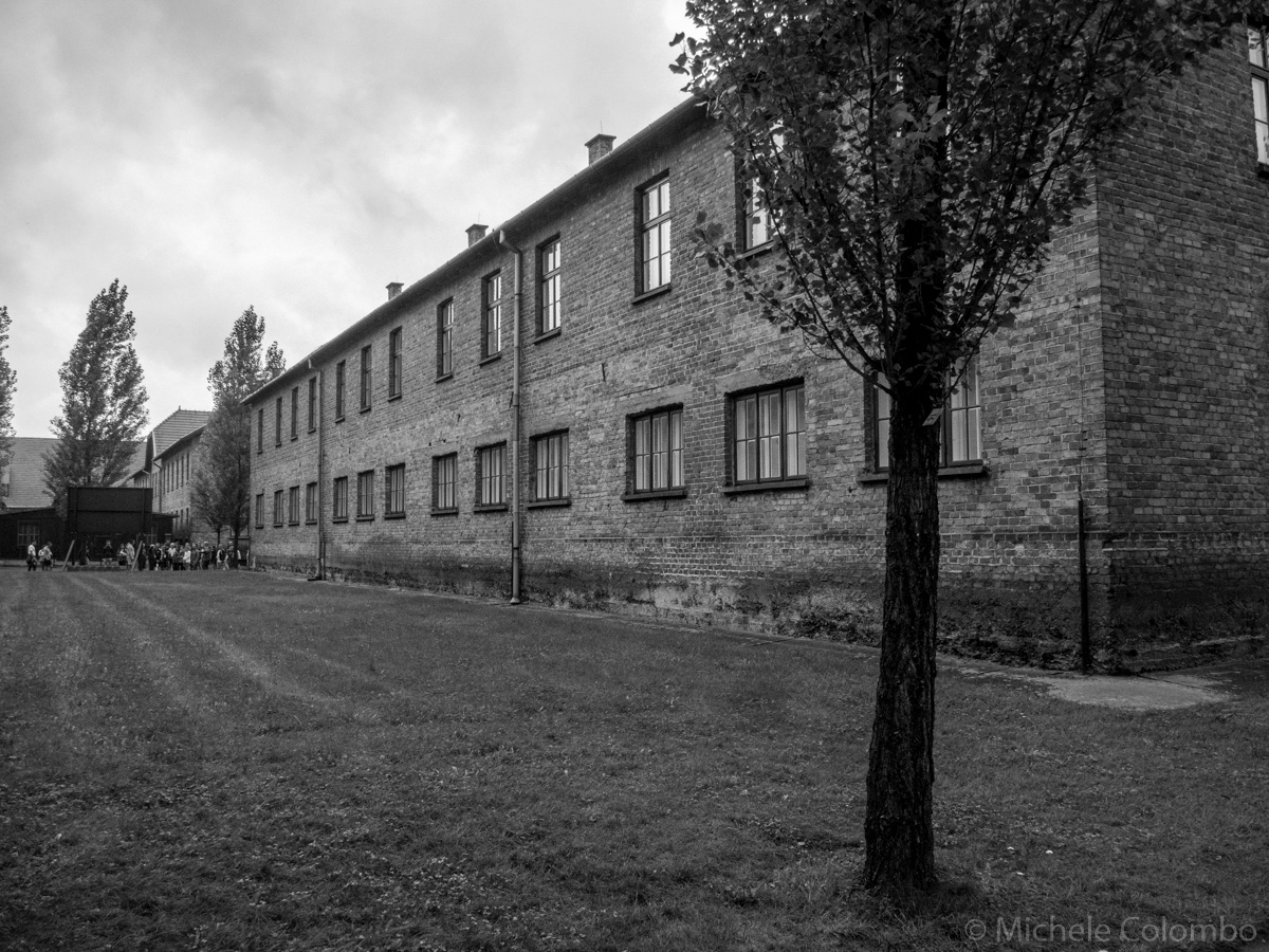 A block in Auschwitz with a tree in the foregorund. Black and White.